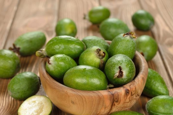 Τα οφέλη και η βλάβη της feijoa, χρήσιμες ιδιότητες και αντενδείξεις, συνταγές