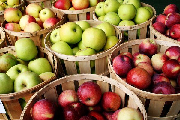 Οι καλύτερες ποικιλίες μήλων